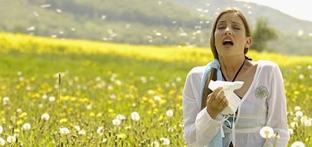 Zaustavite alergiju na prirodan način