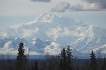 Na Aljasci otkriven fosil reptila