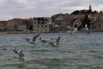 Dalmatinska regija: Ko će koga ako neće svoj svoga