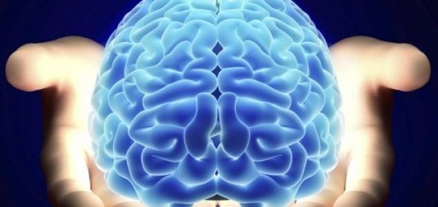 Klonirani mozak pokazat će nam lijek za shizofreniju i Parkinsonovu bolest