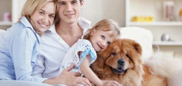 Koliko nas naši psi razumiju?