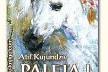 """Nova digitalna knjiga """"Paleta i dlijeto"""" Atifa Kujundžića"""