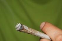 Sud u Kelnu: Teški bolesnici mogu uzgajati marihuanu