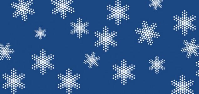 Program otvaranja XXIX Internacionalnog festivala Sarajevo 'Sarajevska zima 2013'