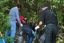 Hiljade građana čiste Bosnu i Hercegovinu