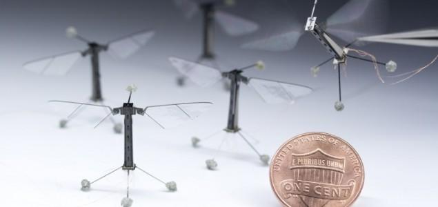 Roboti-insekti izveli prvi kontrolni let