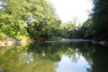 Ekološka katastrofa na rijeci Usori: Nepoznata hemikalija uništila vodeni svijet