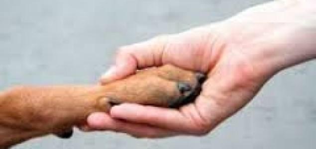 Zlostavljanje životinja – pokazatelj poremećaja ličnosti, ali i poremećaja cjelokupnog društva. Zašto nam treba policija za zaštitu dobrobiti životinja?