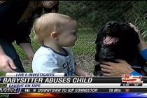 Pas spasio bebu od zlostavljanja