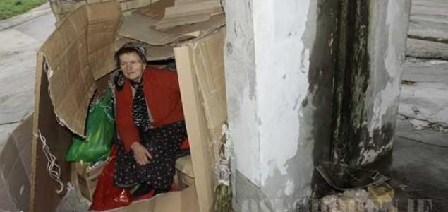 Ana Bajić živi u kući od kartona
