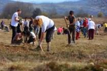 U Sarajevu će volonteri zasaditi 22.000 stabala, akcija i u ostatku BiH