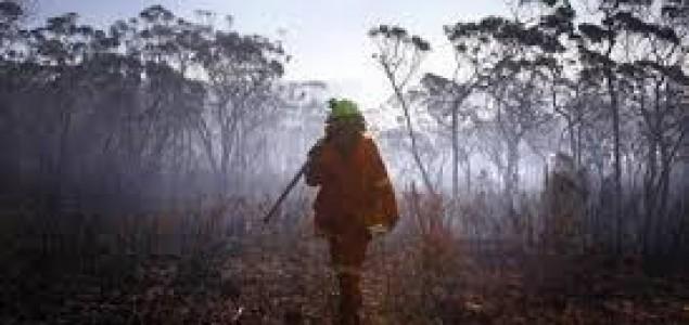 Nezapamćene temperature: Australijom bijesni više od 250 požara