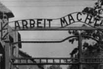 "Istraga o nacističkim zločinima: ""Mi ne progonimo naciste, mi progonimo ubice"""