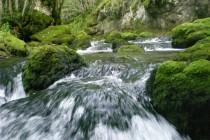 Svjetski dan voda: BiH jedna od rijetkih zemalja za značajnim rezervama pitke vode