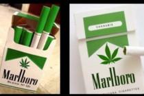 Koliko bi zapravo koštala kutija cigareta od marihuane?
