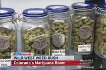 Legalizacija marihuane se isplati