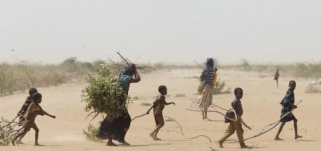 Globalno zagrijavanje prijeti životima biljaka, životinja i ljudi u Africi