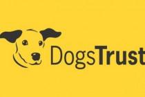 Dogs Trust: REAKCIJA NA ČLANAK  IZ  23.9. AUTORA DALIDE KOZLIĆ