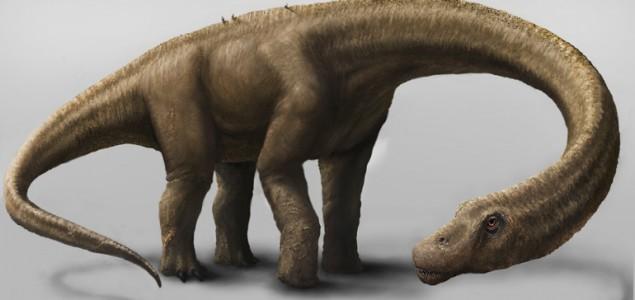 Pronađeni fosilni ostaci najveće životinje koja je hodala Zemljom