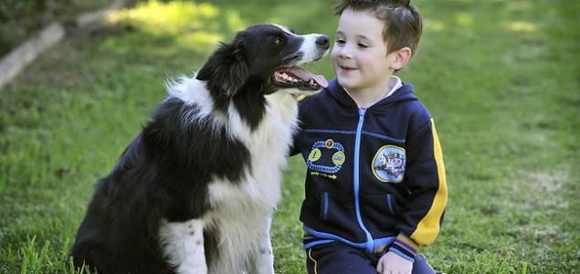 KP: Etika naše partije je drugarska, a pas je, kažu, najbolji čovjekov prijatelj