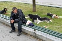 Beskućnici stari, gdje ste?