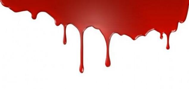 Krvavi 29. novembar