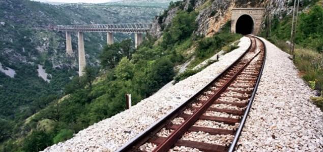 Čedomir Petrović: Stranac u vozu