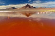 Laguna Colorada, Crveno jezero u Boliviji