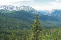 Perućica: Jedna od posljednjih prašuma u Evropi, Nacionalni Park Sutjeska, BiH