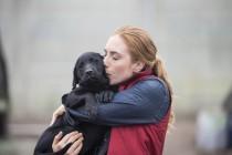 Da li je zaista zdravo da ljubimo pse i oni nas?