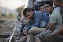 Dnevno preko Vojvodine prođe 2.000 migranata, traži se izvanredno stanje