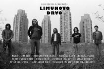 Film LIMUNOVO DRVO – Najposećeniji događaj u pratećem programu 49. zaječarske gitarijade