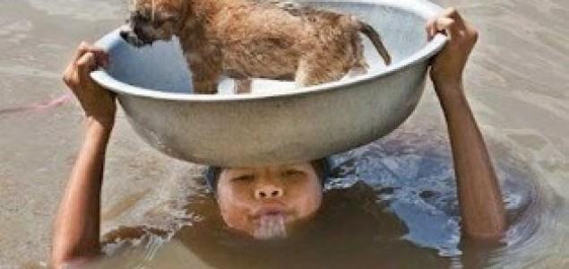 Spašavanje životinja: Dobrih ljudi ima na sve strane