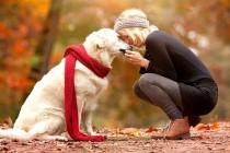 Psi nas vole i vide kao svoju porodicu!