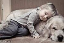 Psi pospešuju društvenu integraciju