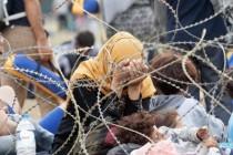 Nema portala za izbjeglice