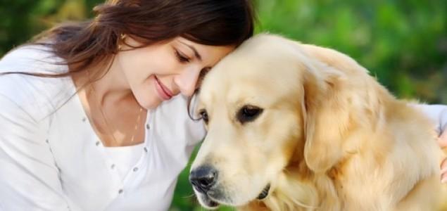Obuka pasa za pomoć kod epilepsije
