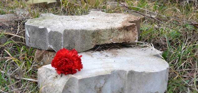 Predrag Lucić: Ubijanje Partizanskog groblja