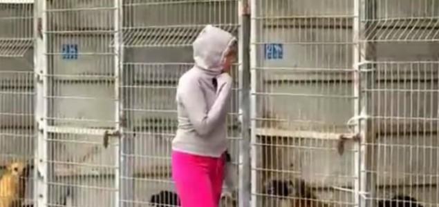 Nije mogla da se odluči kog psa će udomiti, pa je kupila CELO SKLONIŠTE!