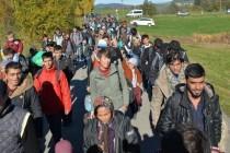 Ministri odbrane u Beču o izbjegličkoj krizi