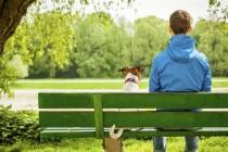 Kako psa naučiti osnovne komande?