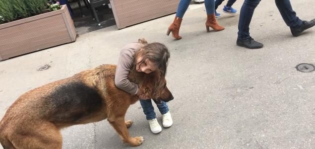 Psi imaju osećanja baš kao i ljudi!
