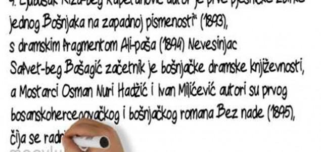 Alisa Mahmutović: Lingvistički cirkus na Neretvi