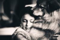 Psi nikada ne umiru, oni zauvek žive u našim srcima!