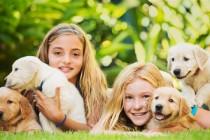 Što treba imati na umu kod dječjeg kontakta s psima