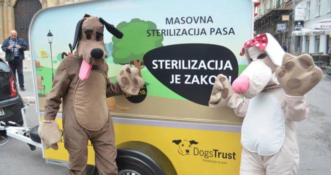 54312dc9-a0e4-498b-8e61-49a6d973813e-dogs-trust-sterilizacija-pasa-preview