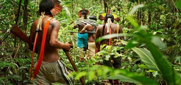 Ostavljanjem šuma autohtonom stanovništvu smanjujemo klimatske promjene