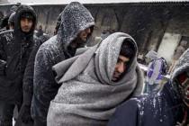 Šta će migrantima beba