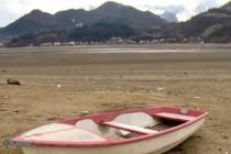 Čudo na Jablaničkom jezeru: ribe lete u nebo!