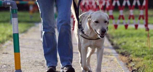 Dogs Trust ponovo nagrađuje osnovce u KS, a ove godine i u Kantonu 10